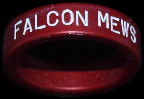 Falcon Mews